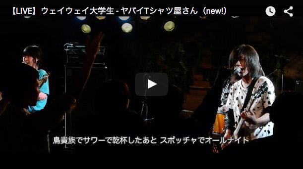 【LIVE】ウェイウェイ大学生 - ヤバイTシャツ屋さん(new!)