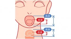 歌が上手くなるボイトレ練習方法②喉を傷めない高い音域の発声方法を解説