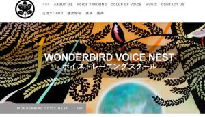 WONDERBIRD VOICE NEST
